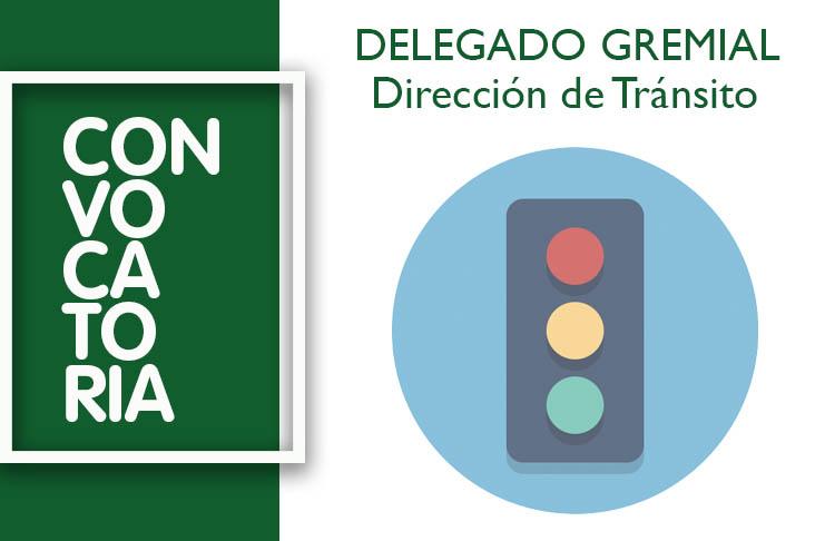 Delegado Gremial Transito